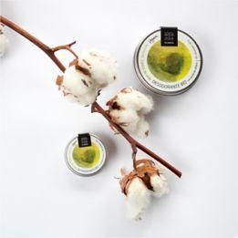 Desodorante Bio Sólido 15gr CARICIA DE SEDA